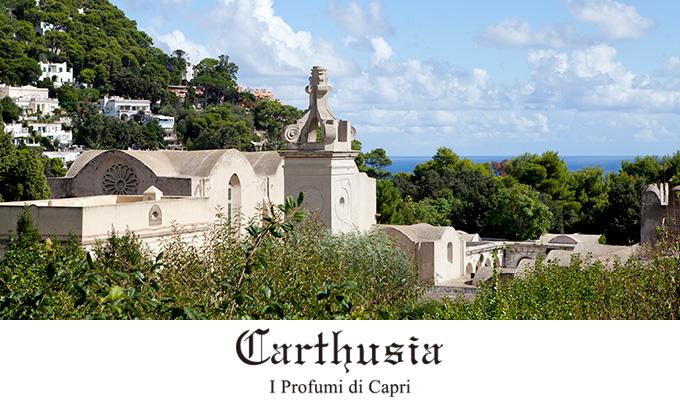 CARTHUSIA カルトゥージア