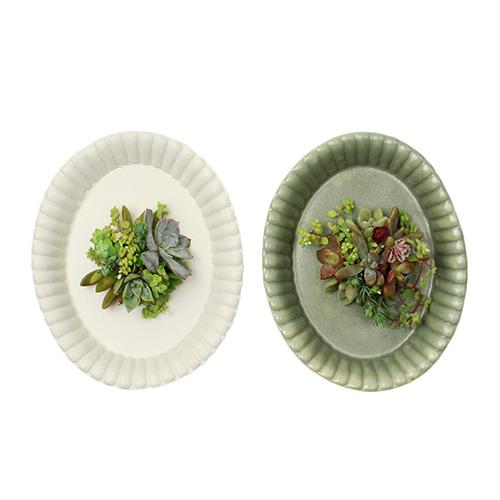 季色 TOKIIRO/【直送】季節の多肉植物のタブロー オーバル(2色)