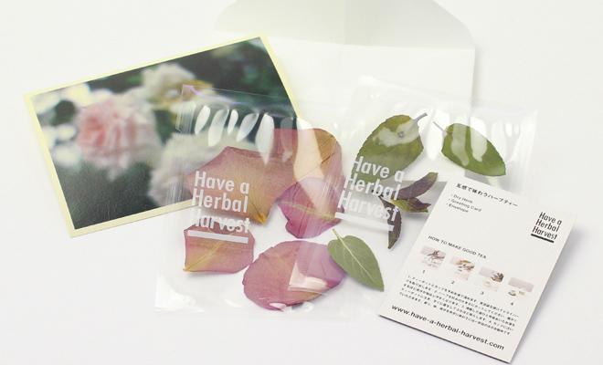 Have a Herbal Harvest ハブ ア ハーバル ハーベスト/Boxセット/Boxセットの中身が広げられた画像