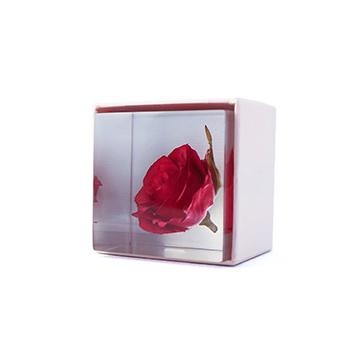 Sola cube ソラキューブ/植物立体標本「Sola cube Labo」バラ