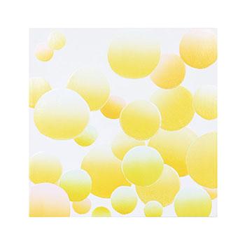 宮木沙知子 Sachiko Miyaki/sensory space 400394419