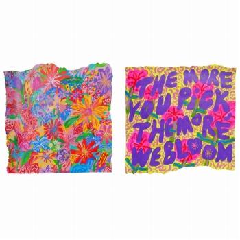 ジュリ・ベーカー Juli Baker/the more you pick, the more we bloom